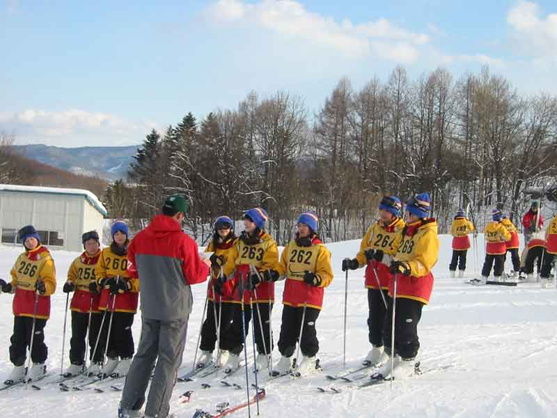 the picture of skiing lesson